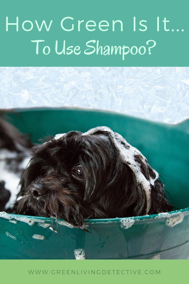 How Green Is It To Use Shampoo Best Dog Shampoo Dog Shampoo Best Dogs