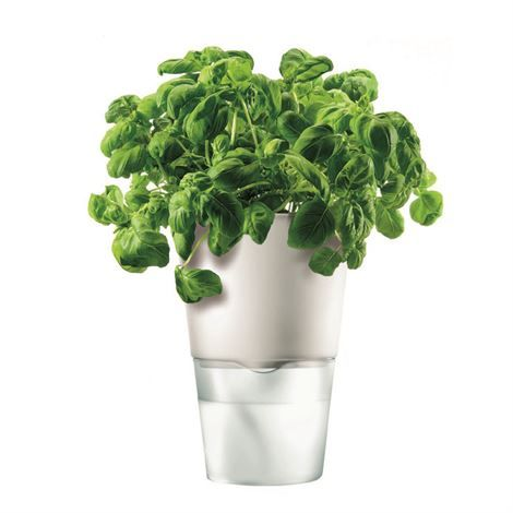 Eva Solo self-watering herb pot - chalk white - Eva Solo