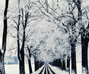 Walkin' in a Winter Wonderland!
