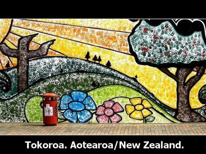 Tokoroa Community Wall Art Project #tokoroa #nz #newzealand ...