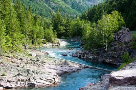 McDonald Creek, British Columbia, Canada Jigsaw Puzzle: http://www.jspuzzles.com/puzzle.php?puzzle=2457837&pin