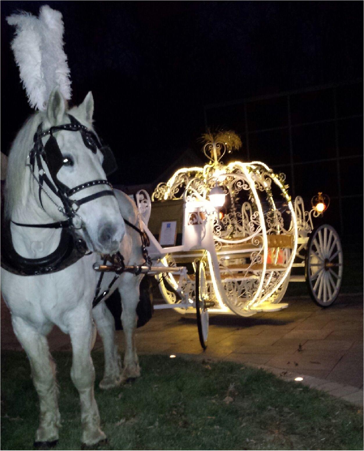 Cinderella Pumpkin Carriage All Lit Up Last Night At Crystal Manor Wedding Glassboro N Cinderella Pumpkin Carriage Horse And Carriage Wedding Wedding Carriage