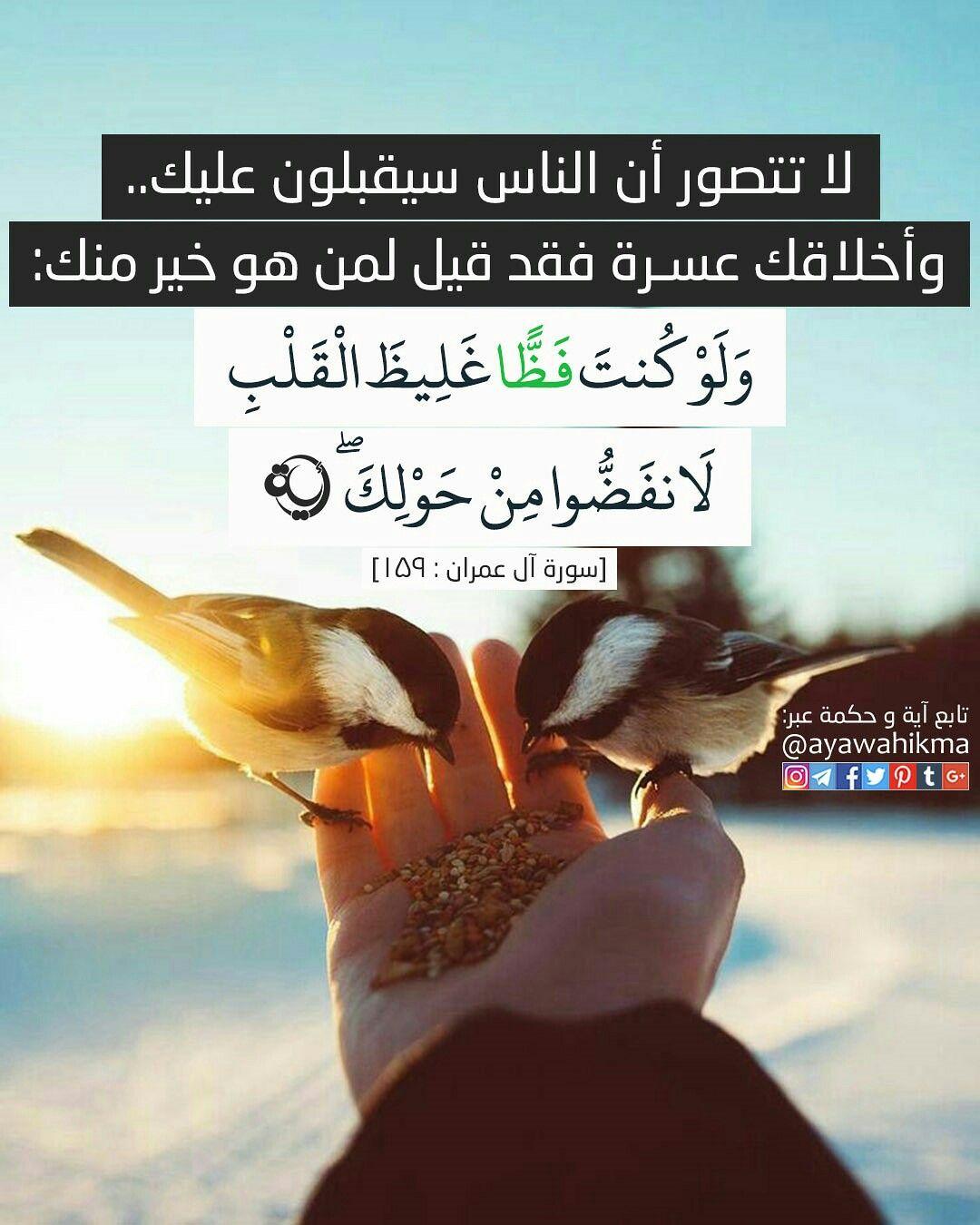 آیة و حكمة لا تتصور أن الناس سيقبلون عليك وأخلاقك عسرة فقد قيل لمن هو خير منك و ل و ك نت ف ظ ا غ ل يظ ال ق ل ب ل Quran Verses Quran Book Quran Quotes
