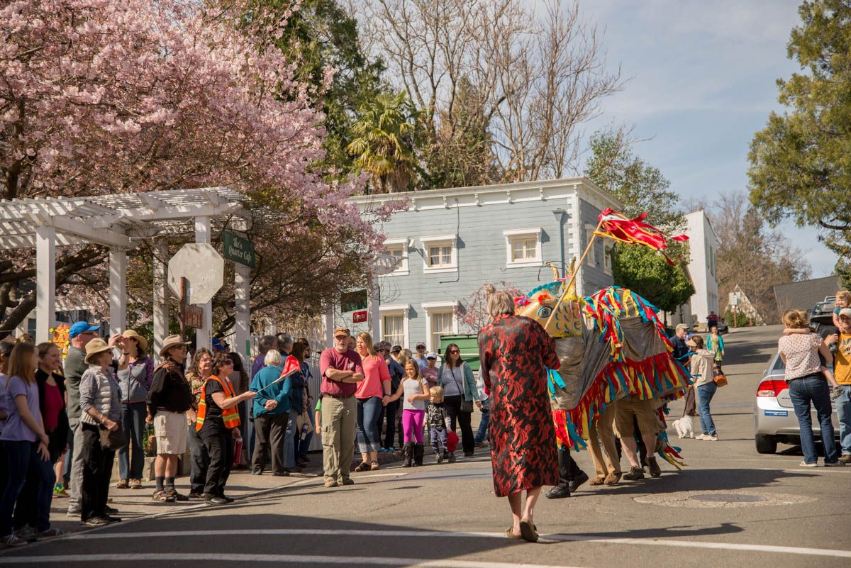 Dragon in nevada city at the chinese new year parade