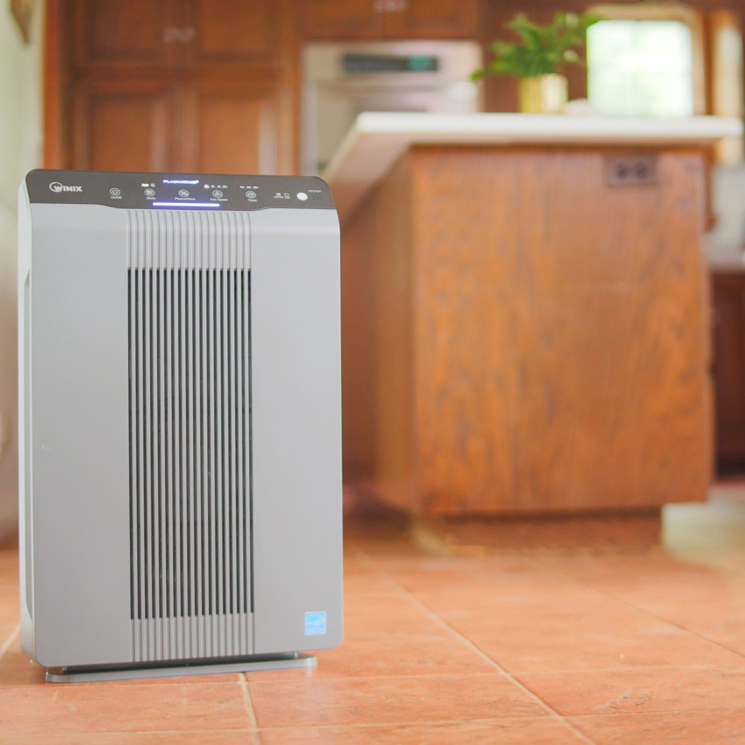 Winix 53002 Air Purifier with True HEPA PlasmaWave and