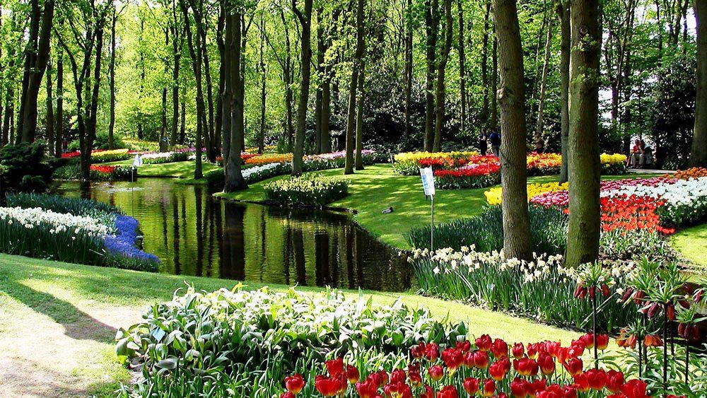 Keukenhof garden tourism netherlands next trip tourism netherlands tourism pinterest for Tulip garden in texas