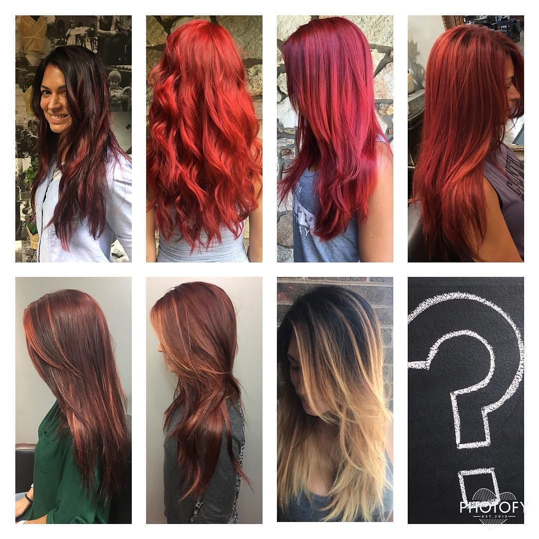 Hair Day Heres A Little Progression Of My Hair Color Over The