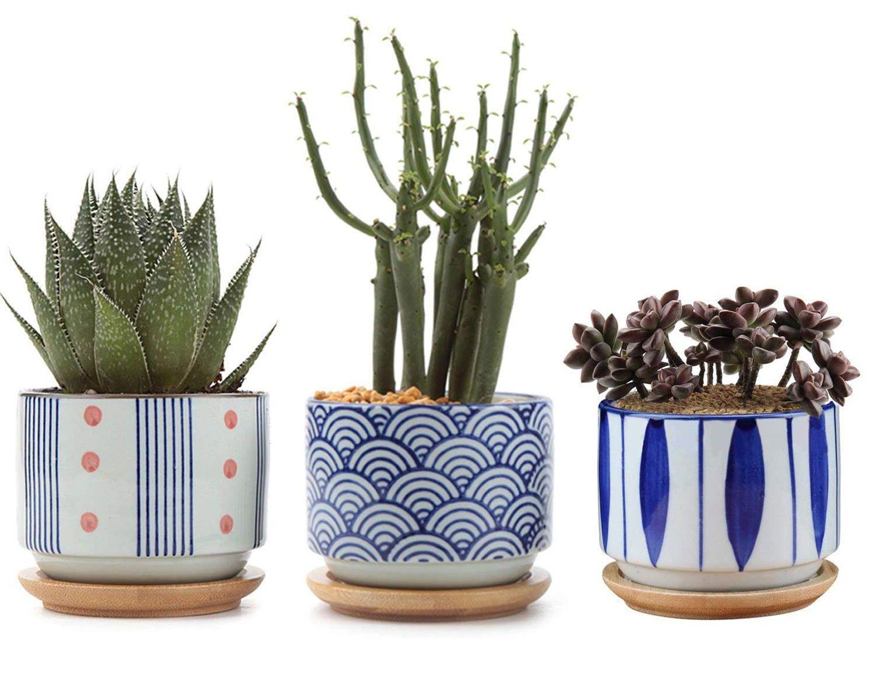 Table Decor Garden Succulent Planter Flowerpot Vase Cactus Bonsai Vase Pot