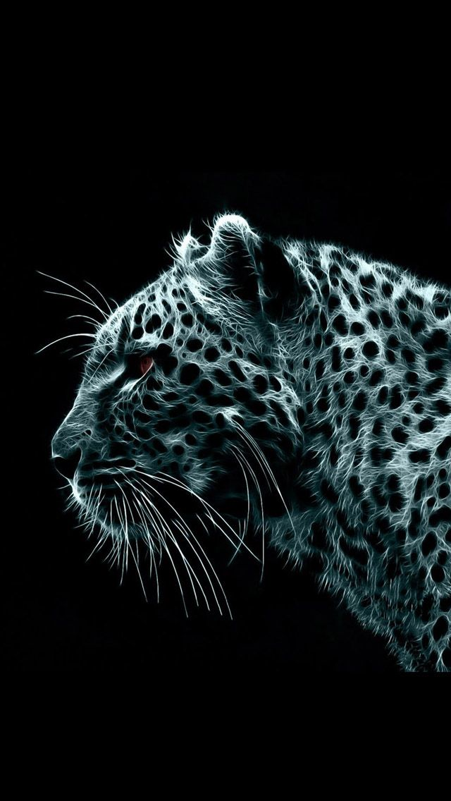 Iphone 5 Wallpapers Hd Leopard 01 Backgrounds Leopard