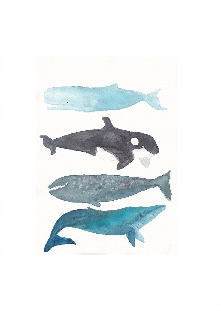 Whale Print 7 Whale Stack Watercolor Painting Art Print Nautical Print Whale Gift Orca Narwhal Sperm Whale Wall Art Beach Decor Wall Decor