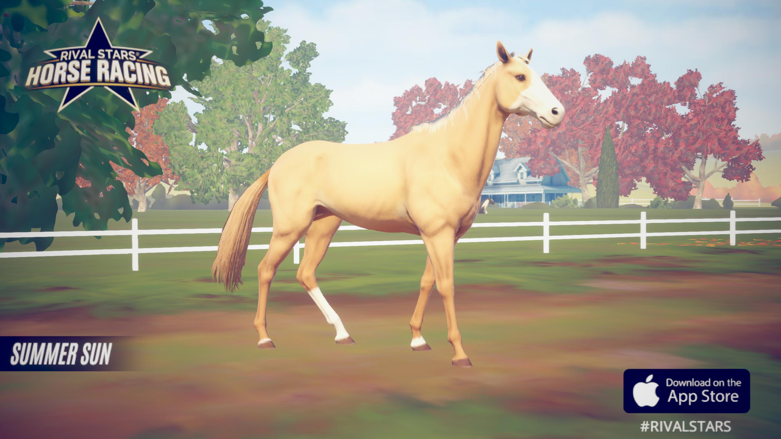 Google Pferdespiele