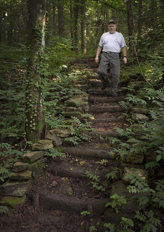 Log Stairs Garden Stairs Landscape Stairs Wooded