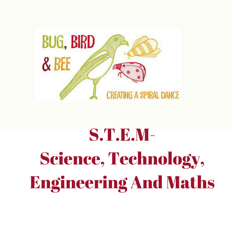 Science, Technology, Engineering And Maths family activities.Primary ...