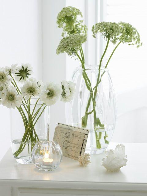 White Flowers Glass Vases Flowers Pinterest White Flowers