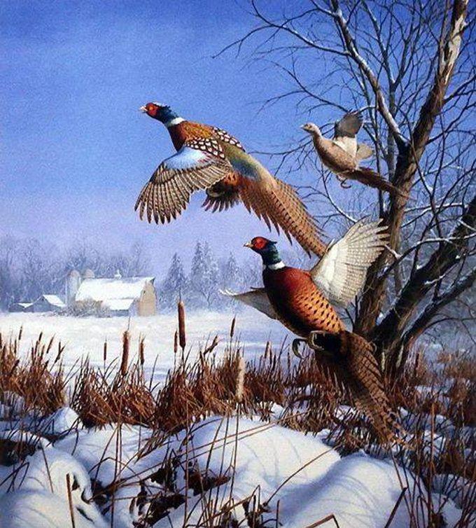 Pheasents In Flight Cross Stitch Pattern***LOOK***X