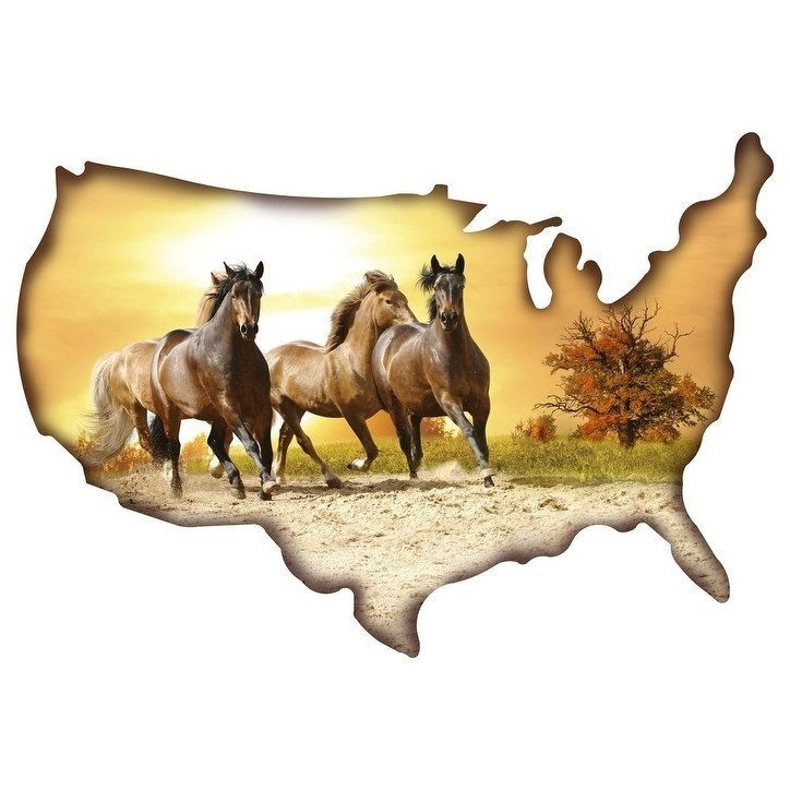 Next Innovations Horses/USA Shape Steel Wall Art, Multi #101209010 ...