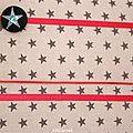 Une note de rose vifsur le thème des étoiles. Tissu à motif étoiles grises sur fond blanc.  Porte-bijoux 'boutons...