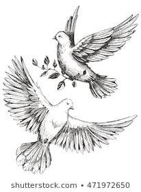 Image by Shutterstock Bird Sketch Love Women/'s Tee