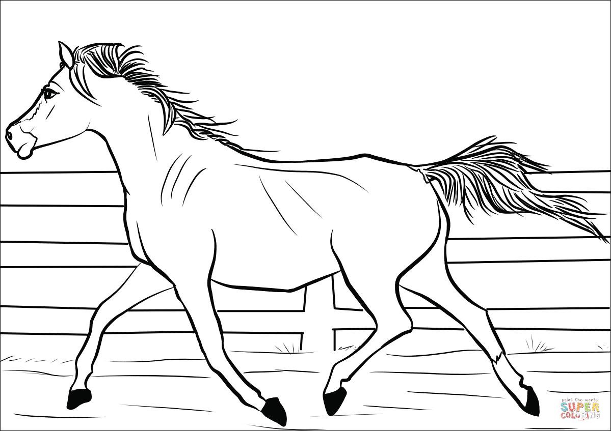 malvorlagen schleich pferde  tiffanylovesbooks