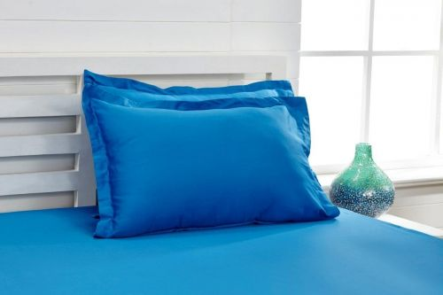 Zanyblue Blue 1 Single Bed Sheet With 1 Pillow Cover