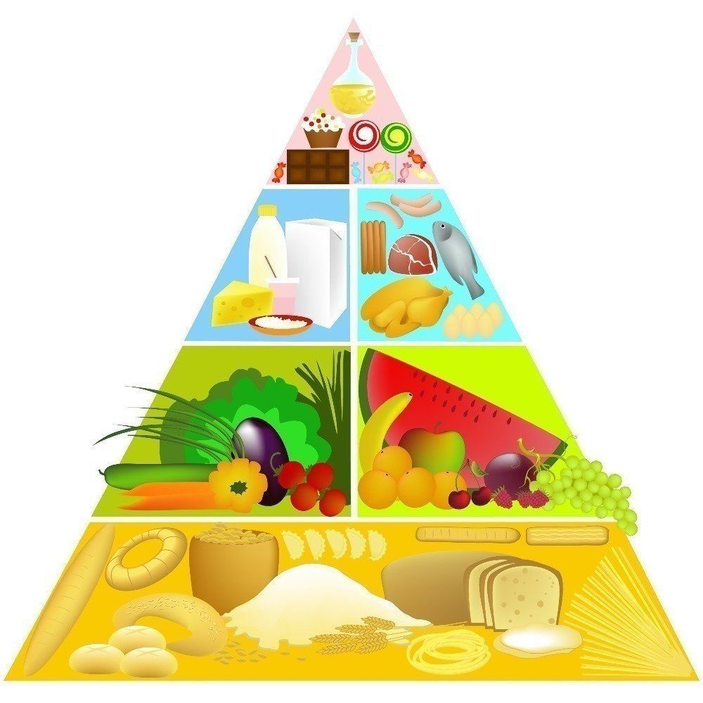 Cooking Healthy With Kids Learnist Food Pyramid Food Pyramid Kids Pyramids