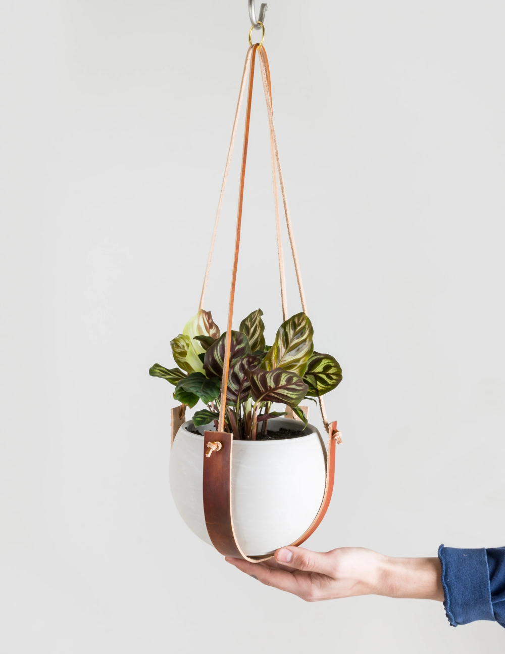 Leather Plant Hanger is part of Diy plant hanger, Plant hanger, Macrame plant hanger, Hanging plants, Plant pot design, Wall plant hanger -