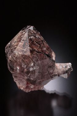 Quartz with Astrophyllite and Riebeckite inclusions - Zagi Mountains, Khaffor Dehri area, North West Frontier Province, Pakistan