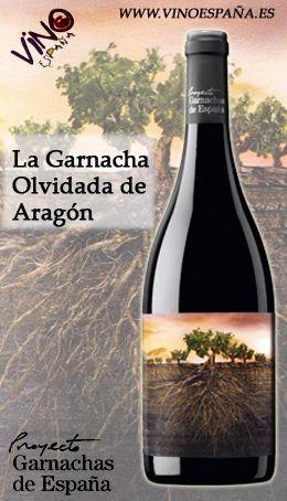 Pin En Vinos Españoles