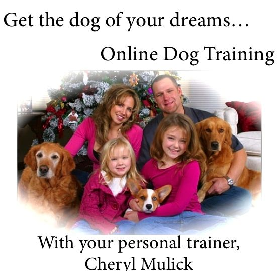 Pin By Cheryl Mulick Cpdt Ka Certified Professional Dog Trainer