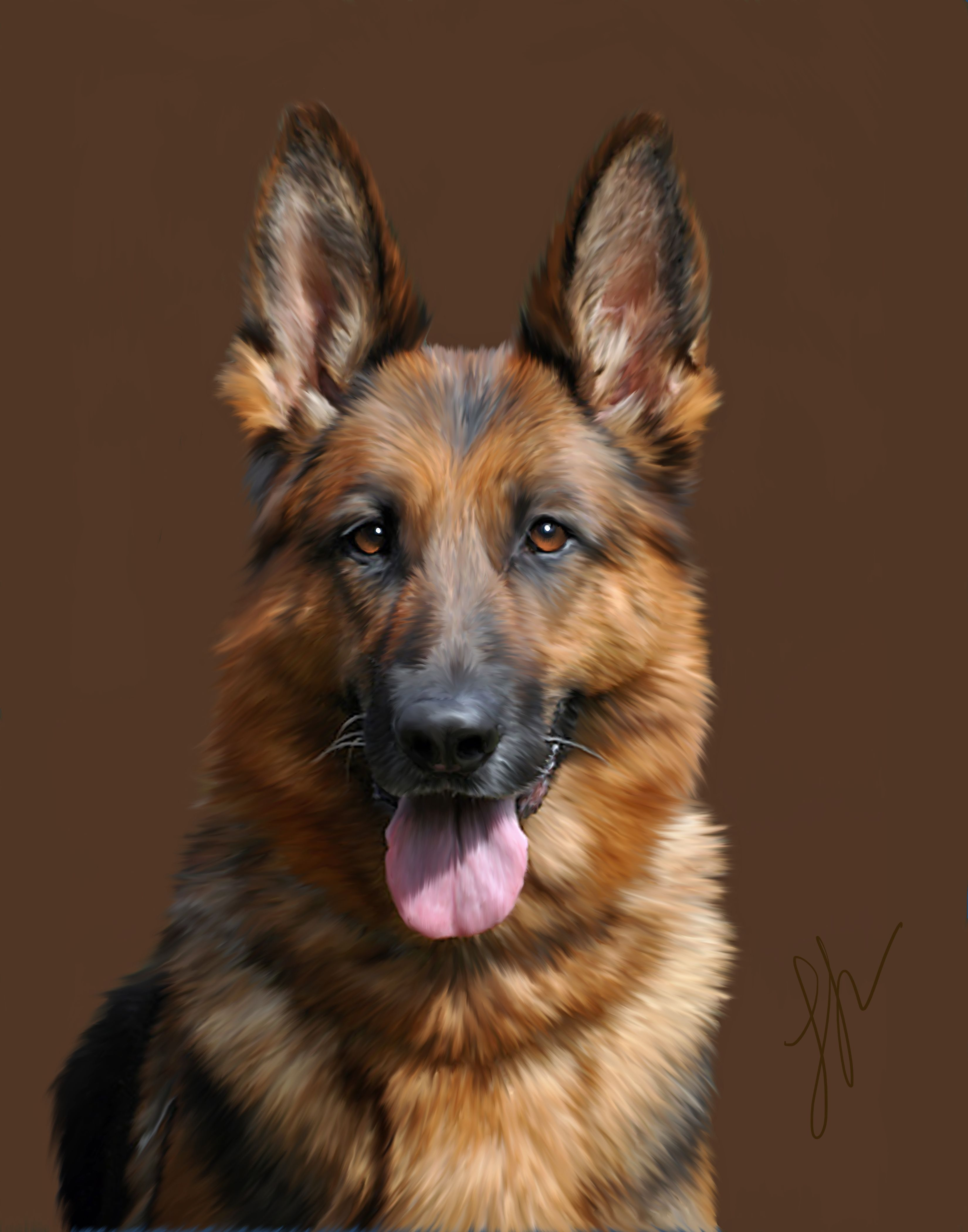 Portrait of a German Shepherd German shepherd painting