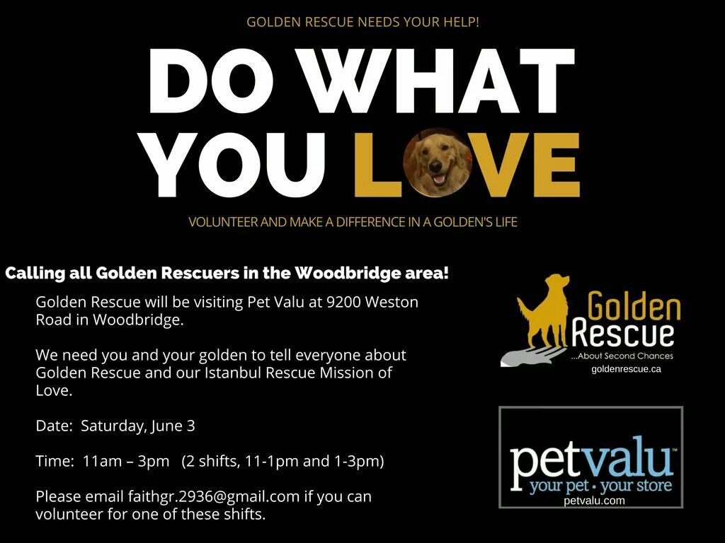 Volunteers Needed We Will Be At Pet Valu On Saturday June 3rd From 11am 3pm In The Woodbridge Area And We Are Looking Fo Rescue Volunteers Needed Life Calling