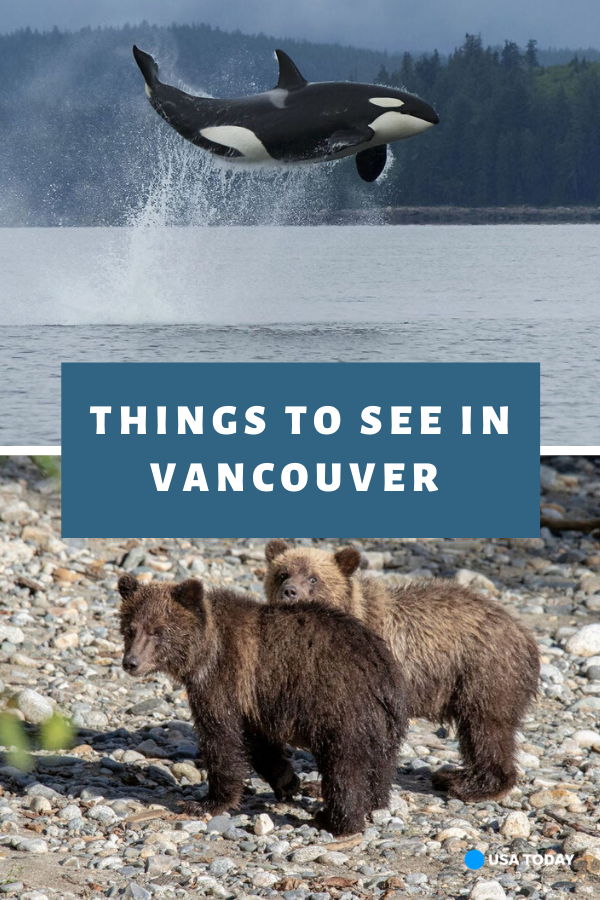 What to see and do on Vancouver Island and surrounding