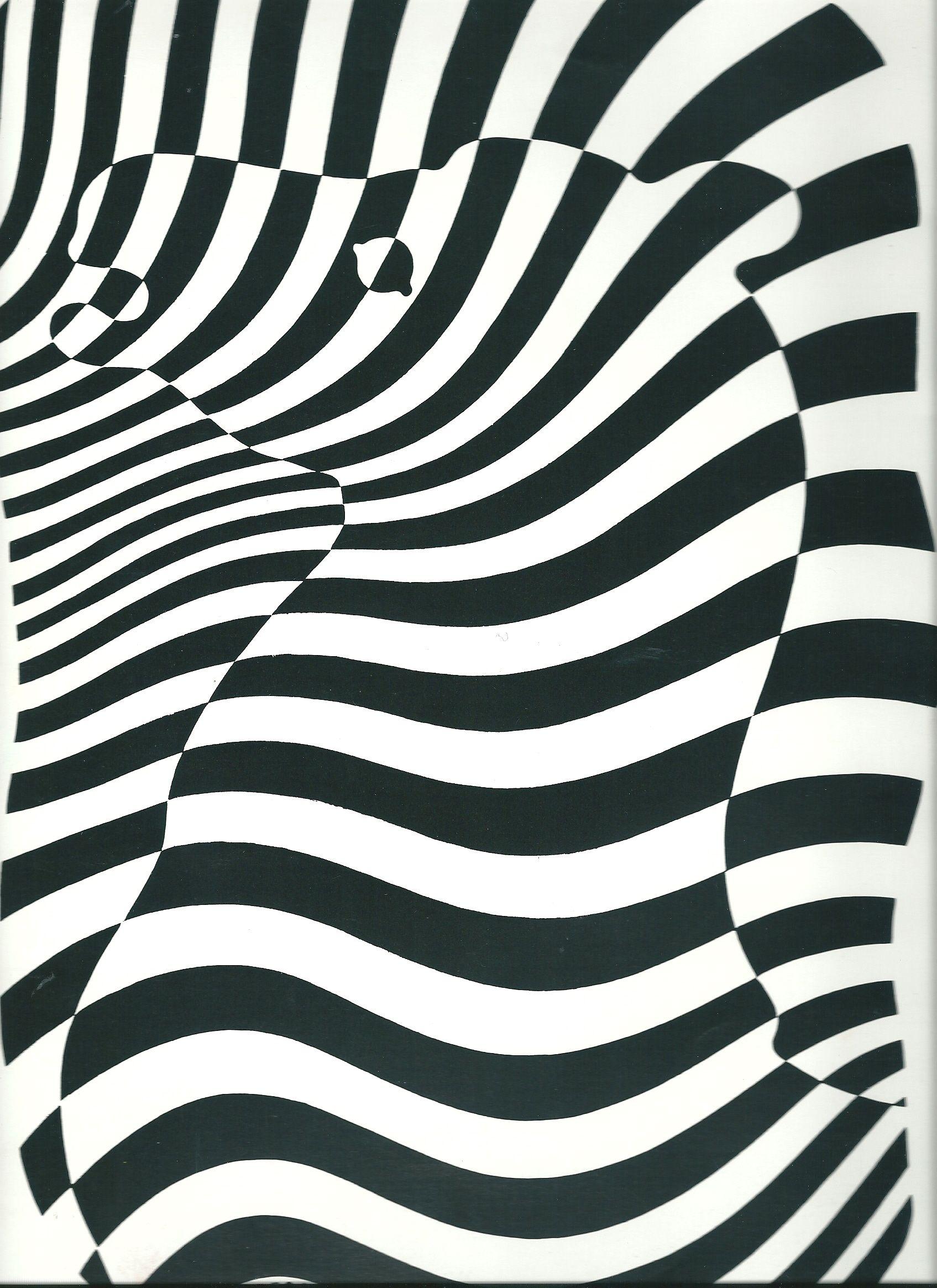 """A la mani¨re de Victor VasarelyEn prenant exemple sur les Å""""uvres de Victor Vasarely et notamment  partir de la peinture """"Zebra"""" réalisée en Les enfants"""