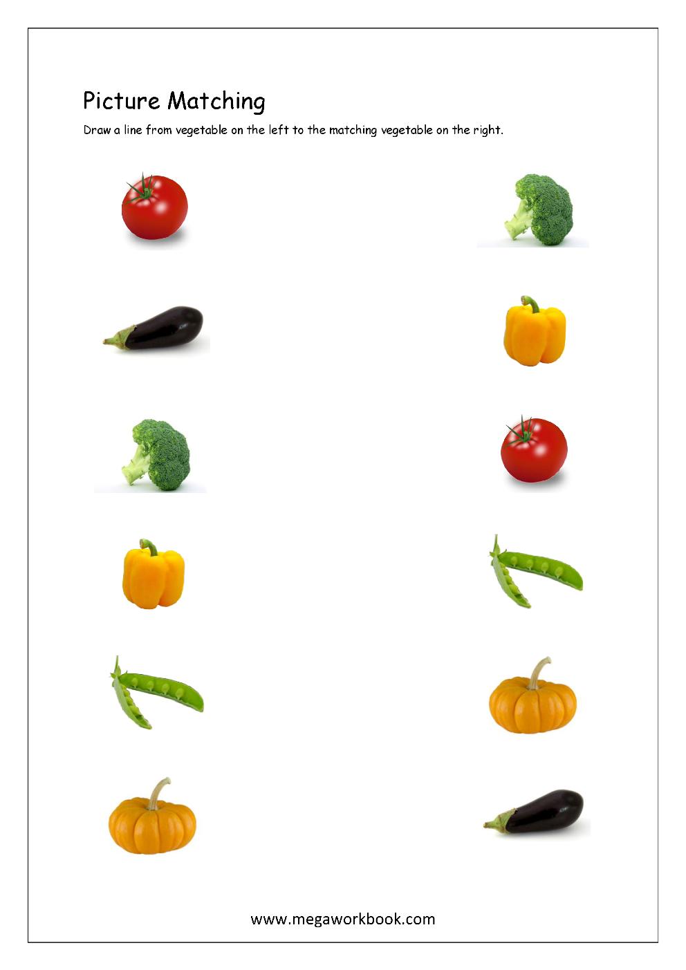 Matching Pictures Worksheets For Kindergarten