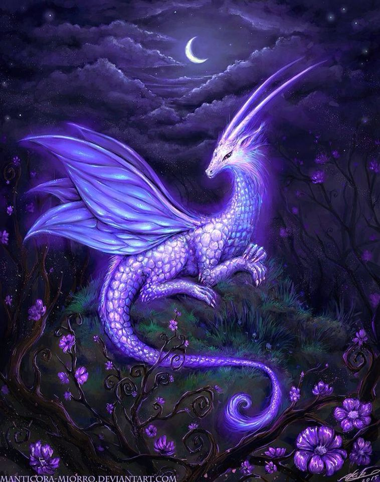 Beautiful Fantasy Art Dragons
