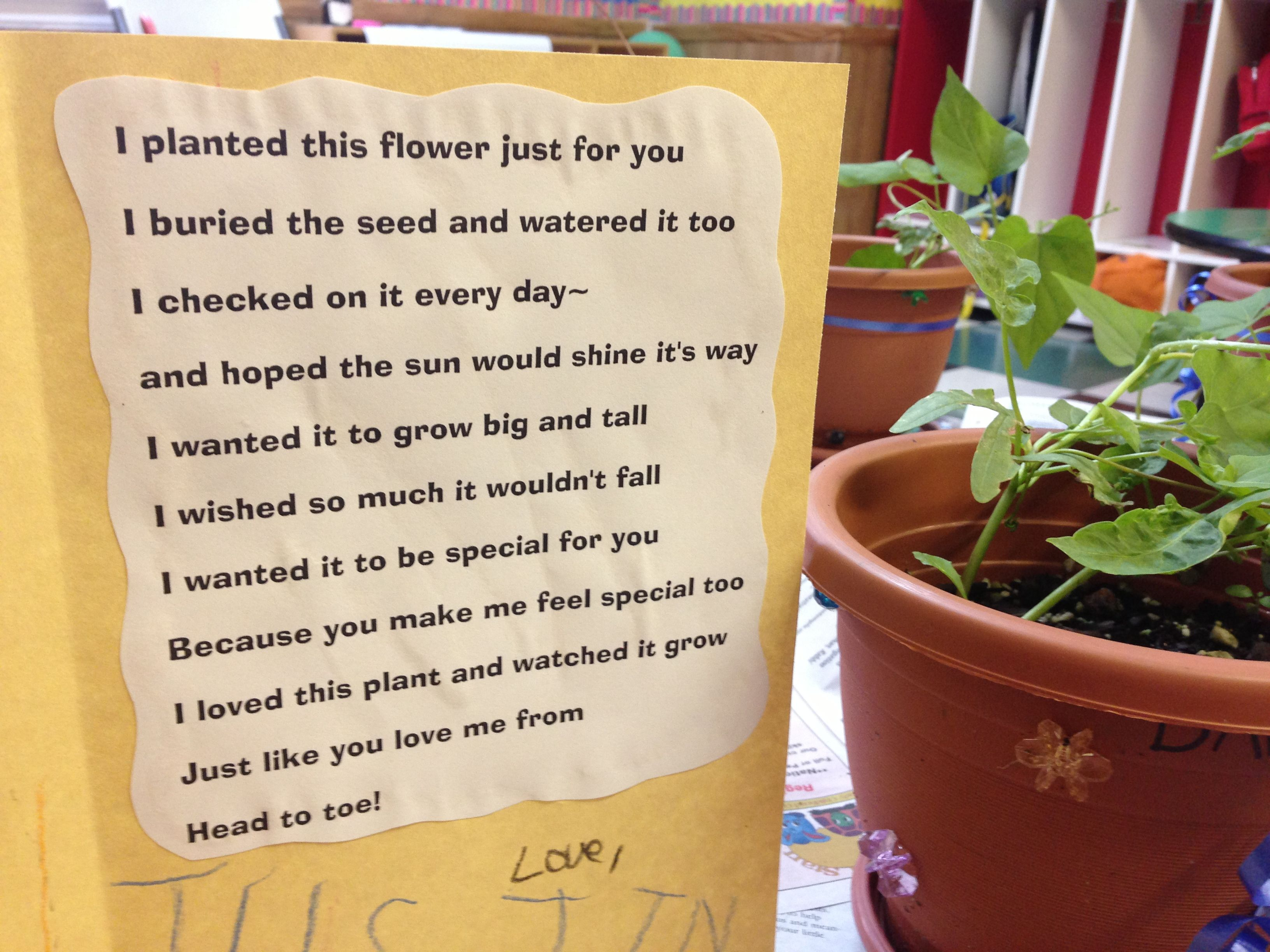 A Cute Poem For Preschoolers To Give With A Plant