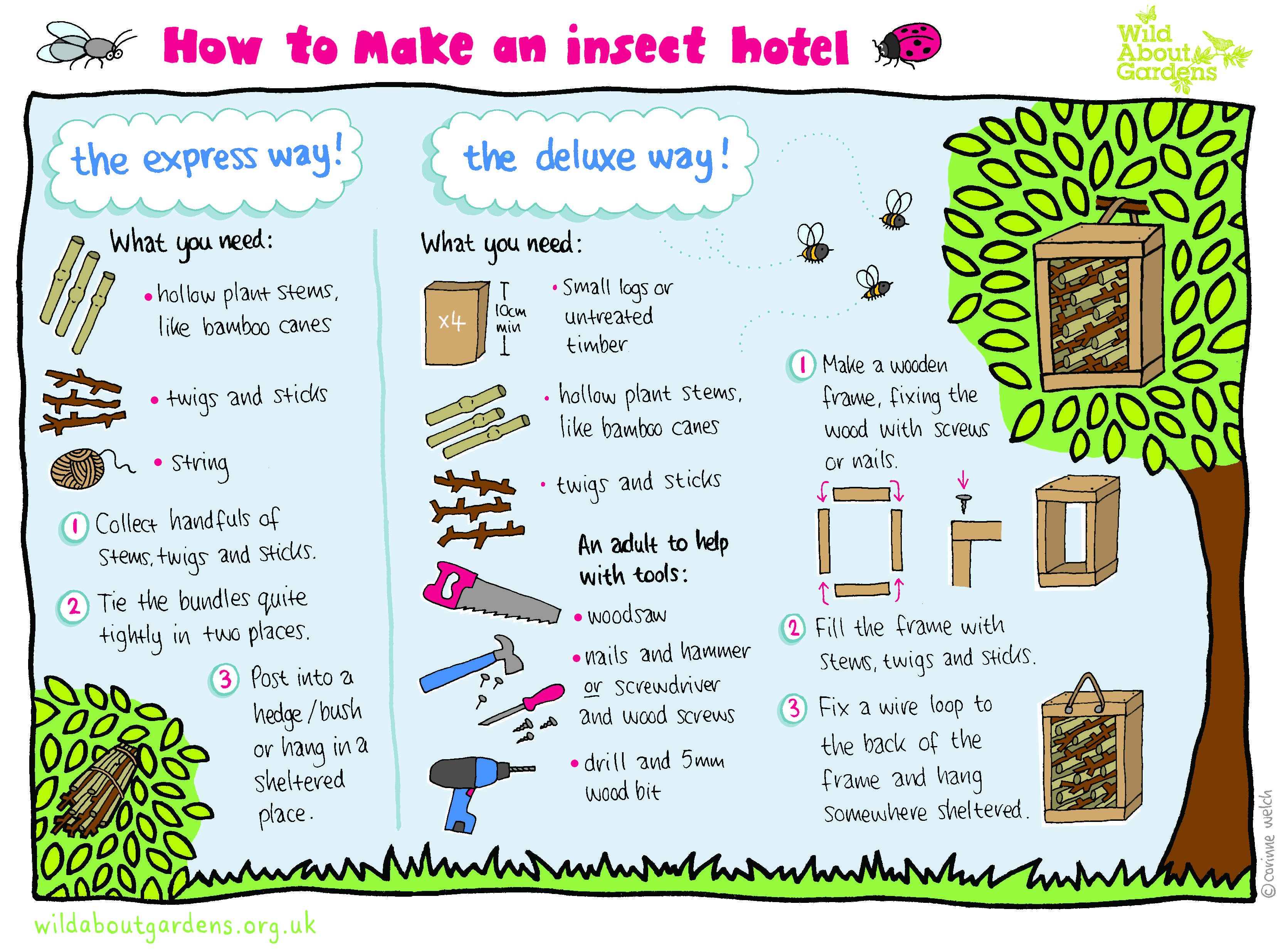 Image result for iy bug house