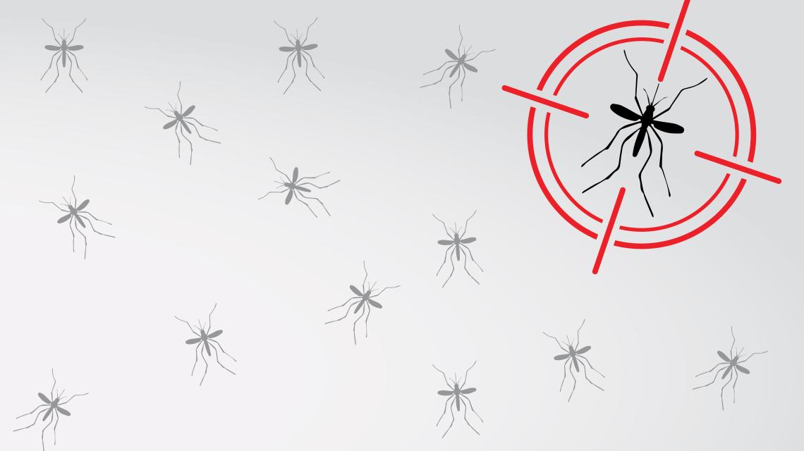 dengue-leitura-corporal