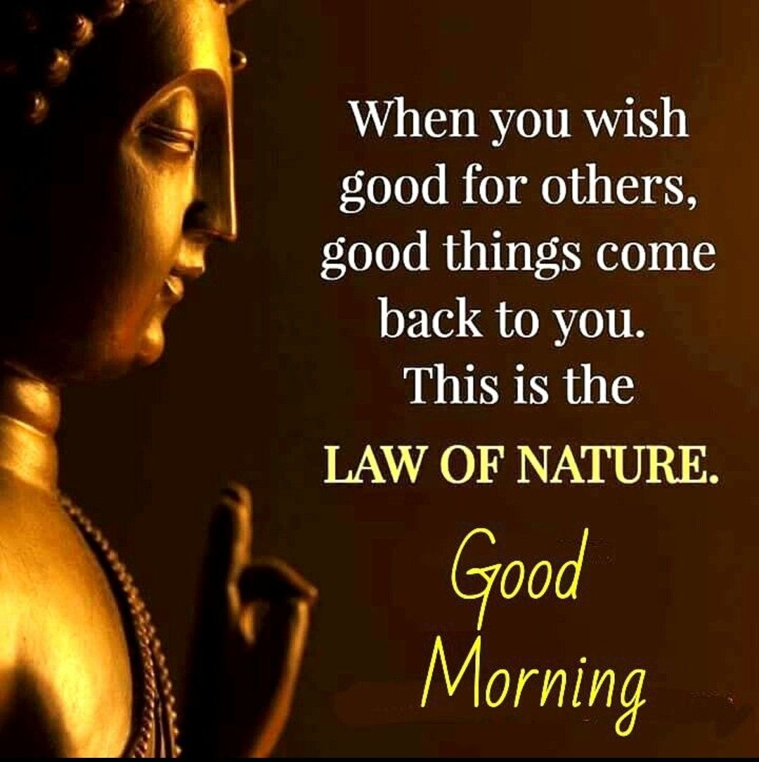 Pin by Dinesh Kumar Pandey on Good Morning (With images ...