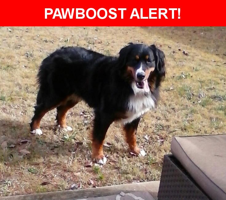 Please spread the word! Hannah was last seen in Cumming, GA 30040.