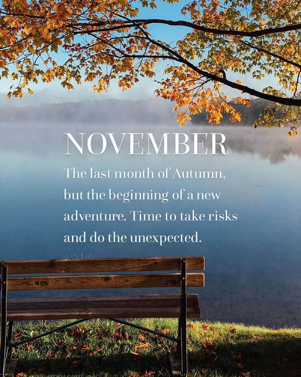 "PicLab™ on Instagram: ""A new month, a new chapter. Hello, November -  surprise us! - #PicLab #HelloNovember"" 