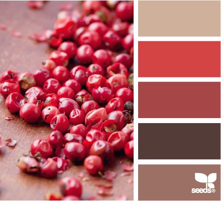 peppercorn reds Colors Pinterest Design seeds Reddish brown