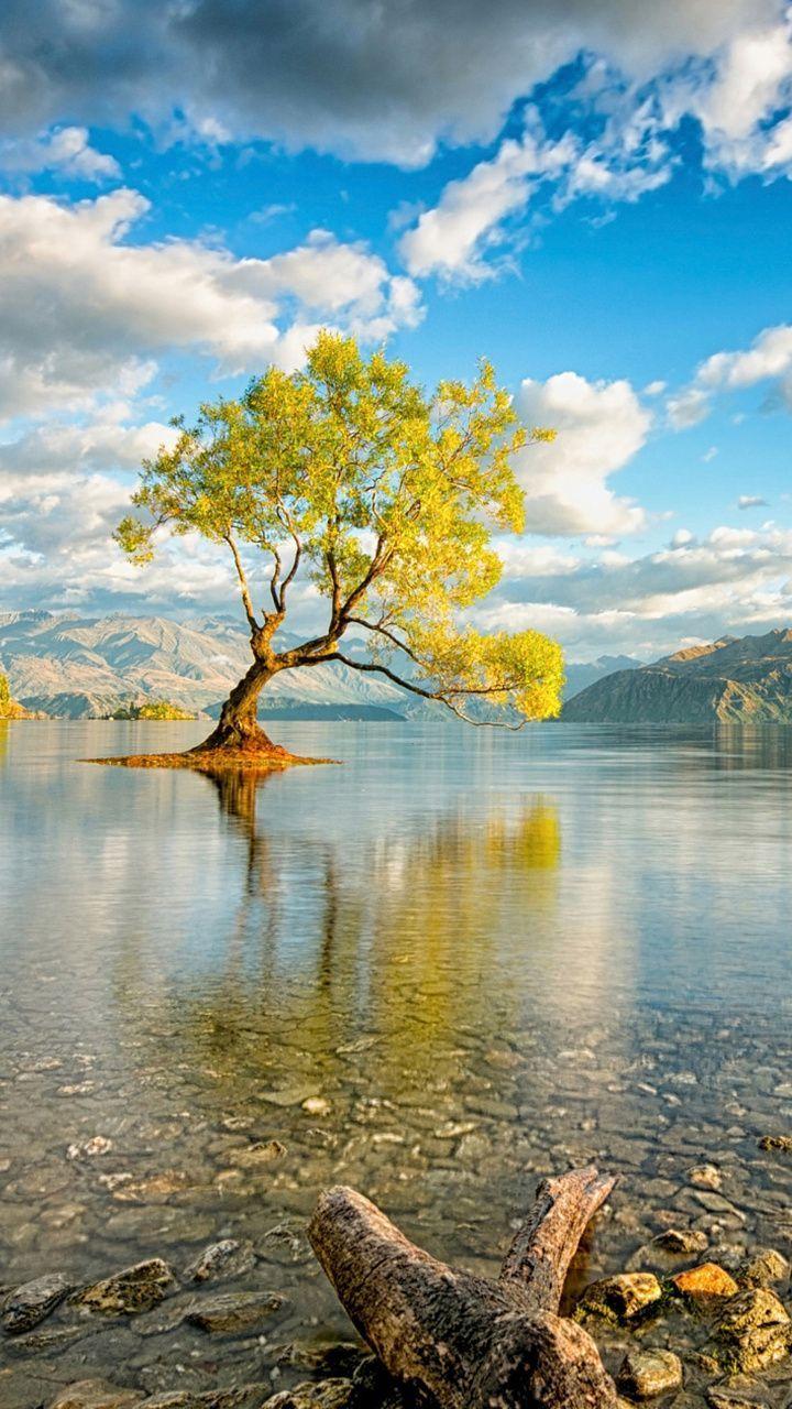 ภเгคк ค๓๏ Nature pictures, Beautiful nature, Nature