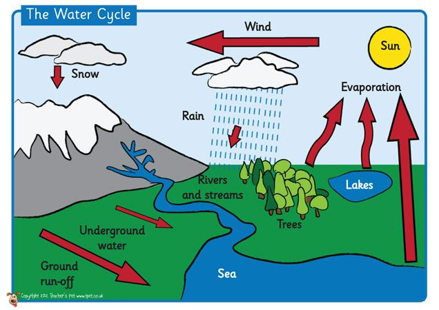 Teachers Pet Displays The Water Cycle Poster FREE Downloadable EYFS KS1 KS2
