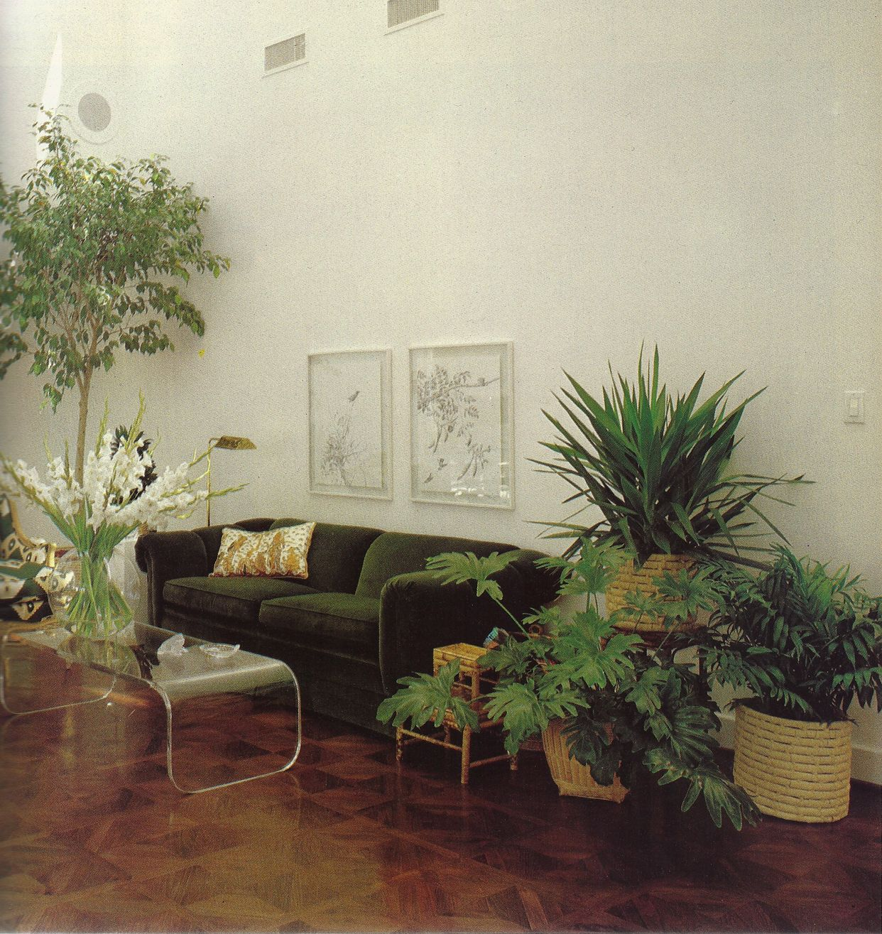 Better Homes and Gardens New Decorating Book, 1981 | house plants ...