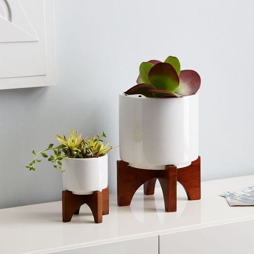 MidCentury Turned Leg Tabletop Planters is part of Unique Home Accessories West Elm - Inspired by the clean silhouettes of the '50s and '60s, our MidCentury Tabletop Planters stand on tapered, solid wood legs with a glazed, ceramic bowl