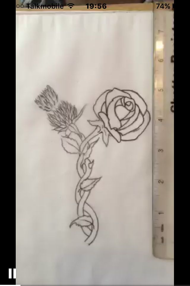 Tattoo Design English Red Rose And Flower Of Scotland The Thistle Flower Entwined Thistle Rose Tattoo Thistle Tattoo Scottish Tattoos