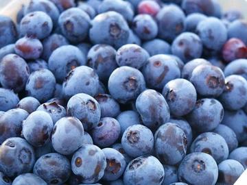 Przedmioty Uzytkownika Twojesady Strona 5 Allegro Pl Blueberry Fruit Food