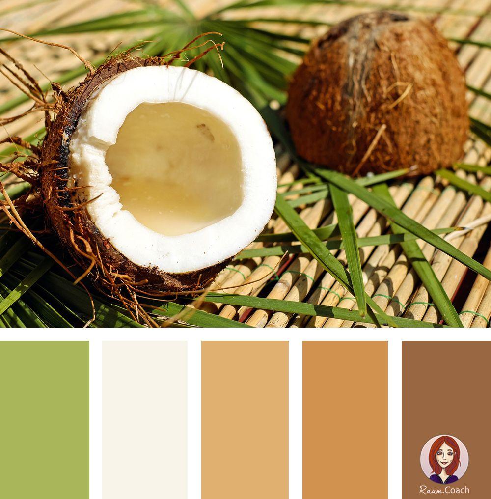Raumgestaltung Farbe Beige Anthrazit Braun Raumgestaltung: Wären Die Warmen Brauntöne Der Kokosnuss Etwas Für Dich