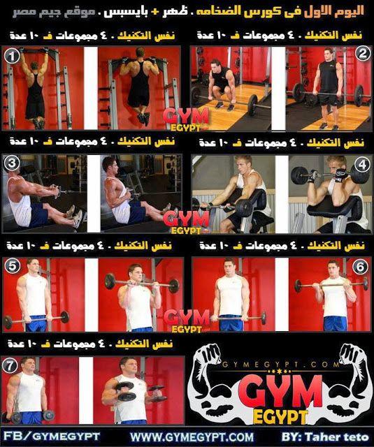 كورس الضخامة العضلية كمال أجسام جيم مصر Gymegypt جيم مصر Back And Biceps Gym Bodybuilding